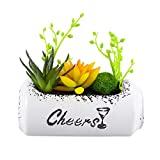 Seeds:WINOMO Simulated Multi-Meat Plant Potted Suit Artificial Succulent Plants Arrangement in Beer Can A003-3