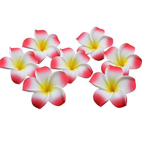 TININNA-100-Pcs-Mini-Artificial-florEspuma-de-Flores-de-Plumeria-hawaiano-para-la-decoracin-del-partido-y-playa-de-arena-rojo