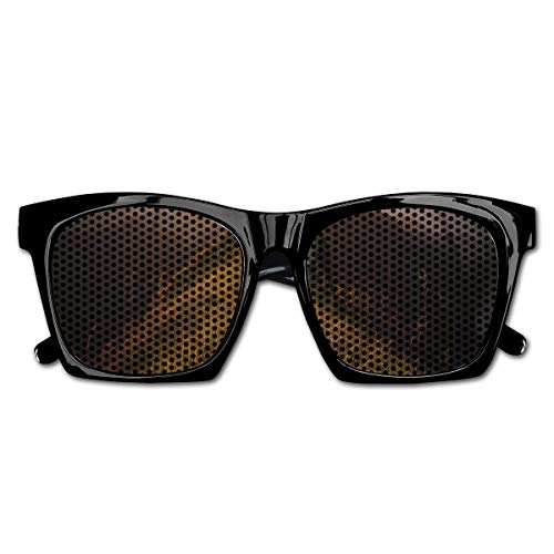 EELKKO Mesh Sunglasses Sports Polarized, Photograph of Road On A Cliff Leading to The Sun Trekking Course Nature Image,Fun Props Party Favors Gift Unisex