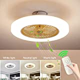 JINWELL Fan Ceiling Fan LED Ceiling Light Creative Modern with Remote Control Quietly