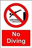 Fr75en Warnschild, Aufschrift No Diving Swimming Pool, 20,3 x 30,5 cm