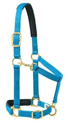 Weaver Leder Gepolsterte, verstellbare Kinn und Hals Halfter, 2,5cm durchschnittliche Pferd oder Wildnis Draft, massiv, blau - Wildnis Blau