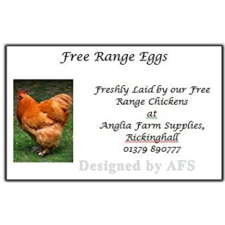 24 x Egg Box labels Personalised Chicken Hen Free Range Boxes