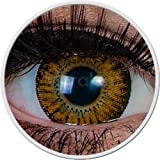 Meralens braune Circle Lenses Sweet Brown mit Behälter ohne Stärke 15mm Big Eyes farbige Kontaktlinsen