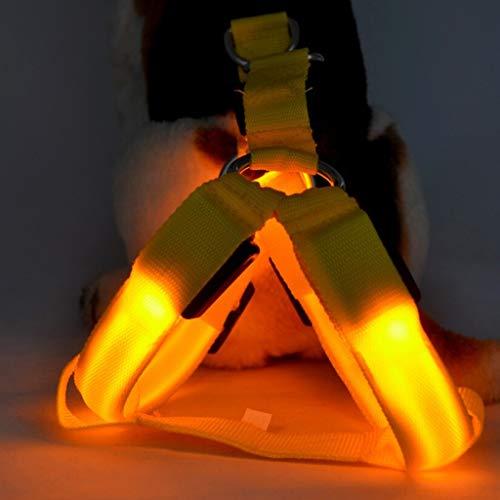 Pettorine per cani Cane Dog Harness Imbracatura a LED per Cani,Gilet Luminoso Torace Torcia Notturna Ricaricabile USB Migliorata visibilità- USB Ricaricabile e Misura Regolabile Collari 3 modalità