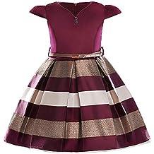 249aeaa43 ... niña color vino. Vestido de fiesta de los niños Vestido de manga corta  de los niños del otoño en