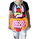 MeterMall Anatomy Apron Human Body Organs Awareness Educational Insights Toy for Kids Preschool