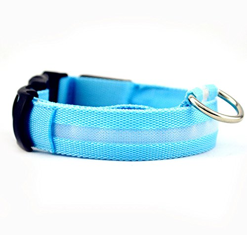 Sijueam Led Pet Dog Collar USB Rechargeable Night Safety Flashing Light up Necklace Loop Puppy Illuminating Collar with Adjustable Buckle, XS size in Blue