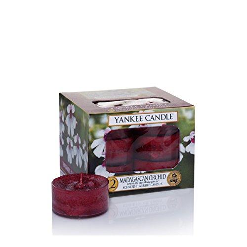 Yankee Candle 1344807E - Orquídea de Madagascar Velas de Té Aromáticas Paquete de  12 unidades color Rojo