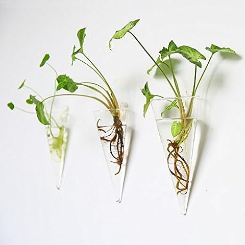 Lot de 3mural décoratif Pot de verre en verre à suspendre Air Plante Réservoir à eau 2pots de plantes conteneurs à suspendre en verre Pots de fleurs
