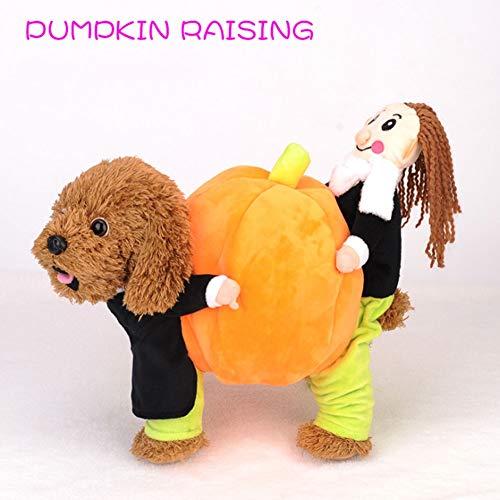 ng, Hund Bösewicht, Kürbis, Lustiges Kleid, Lustiges Kostüm (s-XXL) ()
