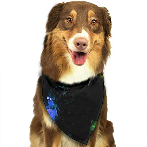 Gxdchfj Rainbow Fire Fashion Dog Bandana Pet Accessories Easy Wash (Katze Im Hut Dressing)