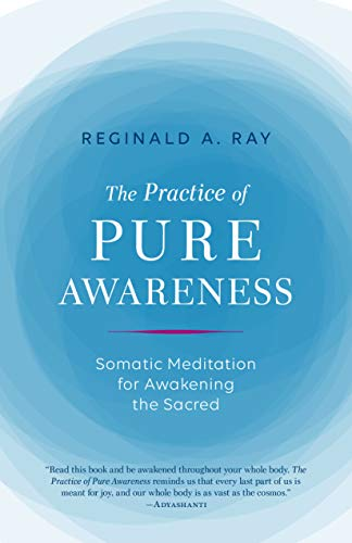 Practice of Pure Awareness por Reginald A. Ray