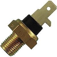 FAE 31610 Sensor, Temperatura del Aceite