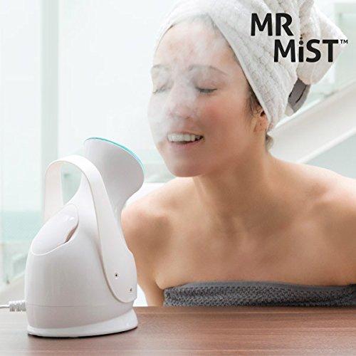 Mr Mist Ionic Steamer Gesichtssauna