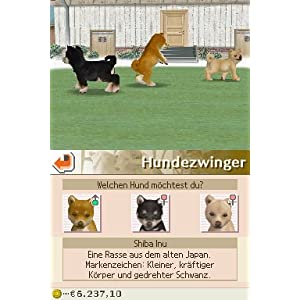 Nintendogs: Chihuahua & Friends