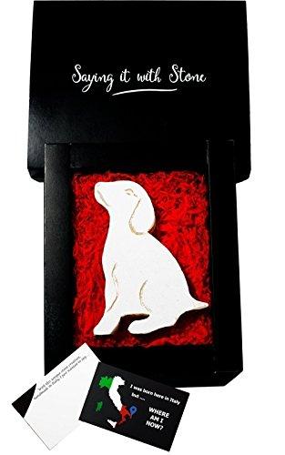 Welpe aus Stein - Handgemacht in Italien - Enthält Fossile Fragmente - Geschenk Geschenkidee Geburtstag Jahrestag Hochzeitstag Hochzeit Männer, Frauen & Freundin - Fragment-sammlung