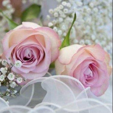 20 Servietten Hochzeit Heirat Kirche Feier Rosen-Strauß rosa pink Geburtstag 33 x 33cm