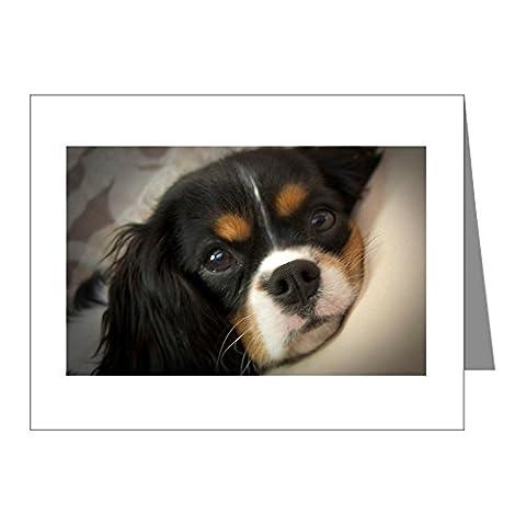 CafePress - Cavalier King Charles Spaniel Note Cards (Pk Of