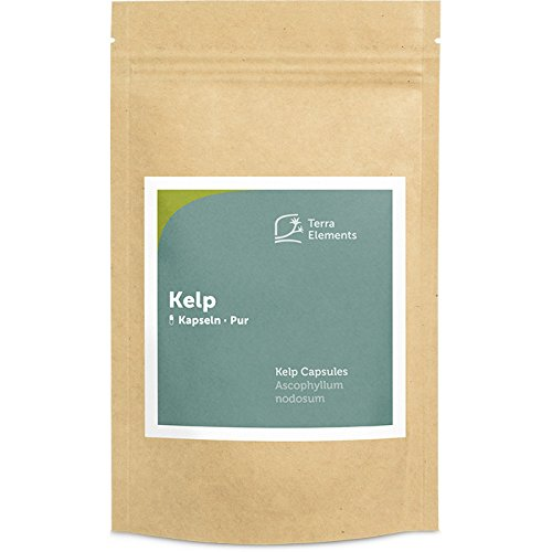 Terra Elements Kelp Kapseln (400 mg, 150 St) I Knotentang I Reich an natürlichem Jod I Wildwuchs I 100% rein I Rohkost I Vegan -