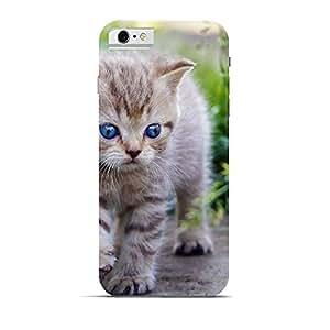 Hamee Designer Printed Hard Back Case Cover for Apple iPhone 5 / 5s / 5SE / SE Design 7165