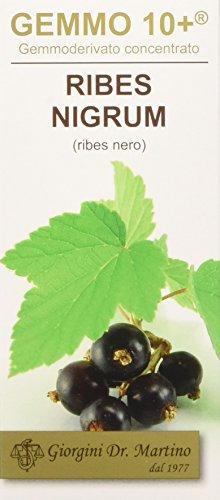 Dr. Giorgini Integratore Alimentare, Ribes Nero Gemmoderivato Concentrato Liquido Analcoolico - 100 ml