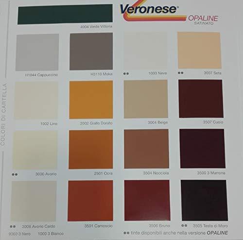 Pintura exterior hierro madera color ocra 2501 disolvente