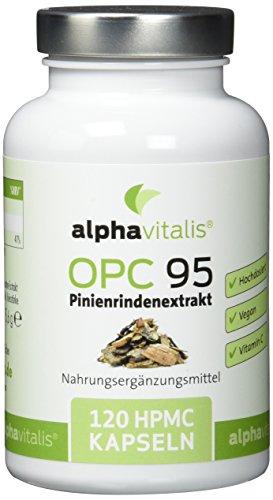 alphavitalis® OPC 95 Pinienrindenextrakt + Vitamin C - 120 vegane Kapseln - hochdosierter Pinienrindenextrakt mit dem Antioxidans Vitamin C aus Hagebutte - allergikergeeignet - ohne Magnesiumstearat (95% Extrakt)