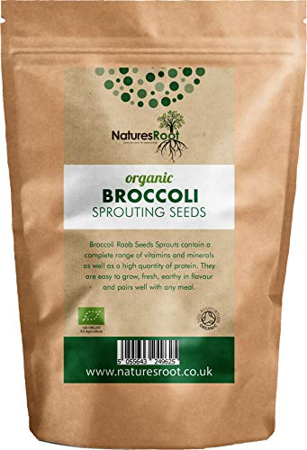 Natures Root Organic Broccoli Sprouting Seeds 1kg - Superfood | Non GMO | Microgreen Sprouts