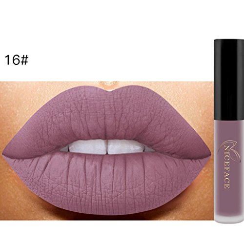 Klassische Matte Lippenstift (Beliebter Lippenstift, Yogogo Lip Matte Liquid Lipstick Wasserdichte Lip Gloss Make-up (#16))