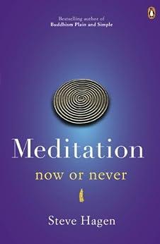 Meditation Now or Never by [Hagen, Steve]