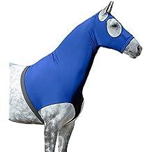 LeMieux Pony/Caballo Lycra Capucha – Benetton ...