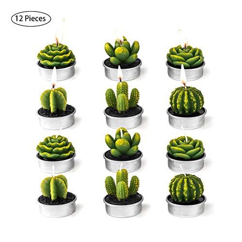 AILHL 12 Stücke Kaktus Teelicht Kerzen Handgefertigt Zart Saftig Kaktus Kerzen für Party Hochzeit Spa Dekoration Geschenke
