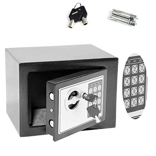 Electronic Home - Caja de Seguridad Digital Acero Inoxidable, 4,6 L, Color Gris