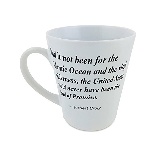 mug-with-had-it-not-been-for-the-atlantic-ocean-and-the-virgin-wilderness-the-united-states-would-ne