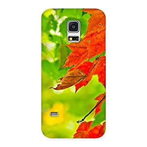 Special Leaf Multicolor Back Case Cover for Galaxy S5 Mini