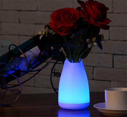 SUGER-LIGHT Bureau Lampe Vase Lumière LED Noël Décoratif Cadeau Intérieur De plein air Table Restaurant À manger Chambre café Boutique Romantique Atmosphère, black