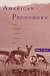 [(American Pronghorn : Social Adaptations and the Ghosts of Predators Past)] [By (author) John Byers] published on (February, 1998)