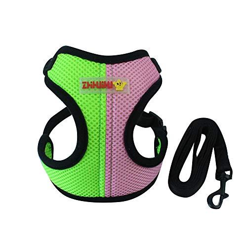 IEUUMLER Imbracatura Regolabile Resistente per Gatti Cuccioli Confortevole per la Passeggiate Jogging e Allenamento IE085 (S, Green)