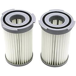 Lot de 2 Filtres à Cartouche HEPA pour les Aspirateurs Electrolux, AEG (alternative à EF75B, 9001959494, AEF75B, F 120). Produit authentique de Green Label