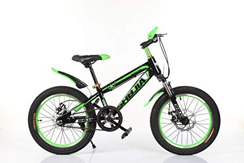 Kinderfahrrad Stahlrahmen für Jungen und Mädchen 20 Zoll Bike Grün mit Scheibenbremsen Mountainbike BMX