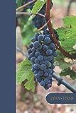 Kalender, Planer & Organizer 2019-2020: Jahresplaner - Taschenkalender - für Weinliebhaber und professionelle Sommeliers mit Bonusseiten für Wein Review - Weintagebuch zum Ausfüllen und Ankreuzen