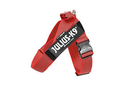 JULIUS-K9, 16501-IDC-R-15, Color&Gray IDC-Gurtbandgeschirr, Größe 1, rot-grau