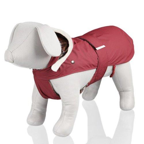 Miglior vestiti per chihuahua mini toy 2020 ⇔ ecco quale