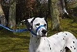 FIGURE OF 8 DOG LEAD HALTER/COMBO SOFT HANDMADE 2 OR 3 METRE .BLUE OR PINK.GREY/BLACK