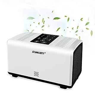 SUMGOTT Luftreiniger HEPA Filter mit Ionisator Air Purifier Entfernt Staub, Pollen, Schadstoffe und Geruchsstoffe Perfekt für Allergiker Raucher