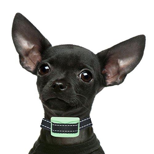 nos-k9-menthe-ecorce-collier-pour-xs-chiens-de-petite-taille-la-douleur-gratuit-bark-control-dressag