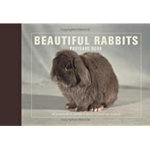 Beautiful Rabbits Postcard Book: 30 Postcards of Champion Breeds to Keep or Send