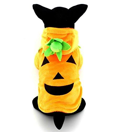 ranphy Kleine Haustier Kleidung Hund Outfit Katze Kleidung Fleece Kürbis Halloween-Kostüm Kleidung Fancy Kleid Orange