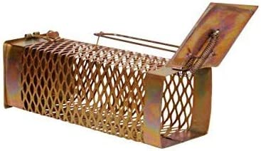 Moira Big Iron Rat Trap/Rodent cage/Mouse Control(27 cms X 10 cms X 10 cms)